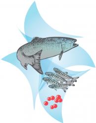 Prince William Sound Aquaculture Corporation